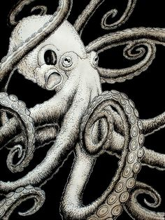 Octopus art by Eric Snelleman. I love the plain white octopus with the solid black background Mehr Kraken, Octopus Tentacles, Octopus Art, Octopus Drawing, Octopus Tattoos, Squid Tattoo, Octopus Design, Sea Art, Sea Monsters