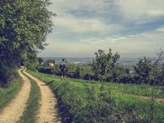 Check out Man looking at landscape by Patricia Hofmeester on Creative Market