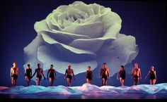 Momix Dance Company  May 9th...can't wait!