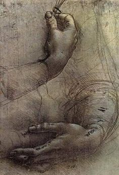 Leonardo da Vinci - Study of Arms and Hands
