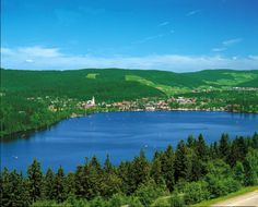 Lake Titisee - Black Forest (Germany)-rent a paddle boat, pack some bread and beer, we'll call this a date.