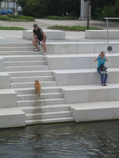 two people and one dog on the riverbank My Design, Stairs, Dogs, People, Stairway, Staircases, Ladders, People Illustration, Pet Dogs