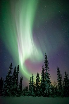 Northern lights image by talented photographer Justin Reznick