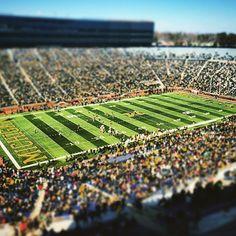 It's Harbaugh season. Michigan Athletics, Michigan Wolverines Football, Best University, University Of Michigan, Go Blue, Ann Arbor, City Photo, Places To Go, Michigan Wolverines