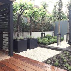 Which plants put in a suspension? Rooftop Garden, Yard Design, Garden Stones, Garden Cottage, Backyard Landscaping, Garden Inspiration, Beautiful Gardens, Gazebo, Plants
