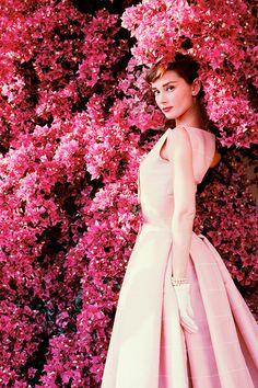 delicada como una flor, la bella Audrey Hepburn, (1955)