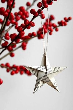Paper star. These are so cute! I would love them big and hanging in white branches like from Dani's wedding