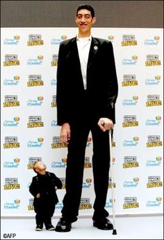 The world's tallest man, Sultan Kosen ft 1 in), and the shortest man in the world, He Pingping ft 5 in). (wonder, is he descended from ancient giants or is this medical.
