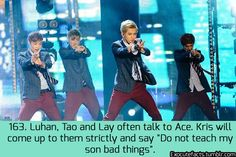 exo cute facts -