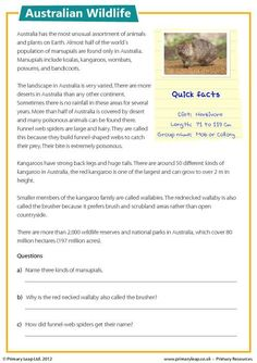 This reading comprehension includes some facts about Australian wildlife. Students read the text and answer the accompanying study questions. Reading Comprehension Posters, Comprehension Activities, Reading Fluency, Reading Passages, Reading Response, English Lessons, Learn English, English File, English Online