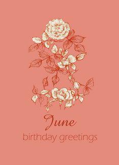 Happy June Birthday Greetings White Rose Flower Ink Drawing Greeting Card