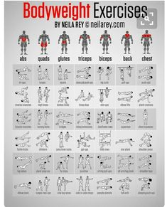 Bodyweight Exercises Chart - Full Body Workout Plan To Be Fit Ab - PROJECT NEXT - Bodybuilding & Fitness Motivation + Inspiration - hopefully this won't make me looking like the Hulk, but I do love me some body weight exercises Body Fitness, Health Fitness, Fitness Diet, Enjoy Fitness, Fitness Blogs, Woman Fitness, Female Fitness, Physical Fitness, Fitness Models