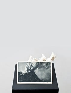 Alessandro Piangiamore, Untitled (Coral, postcard, pedestal), 2010