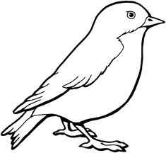 bird coloring sheet