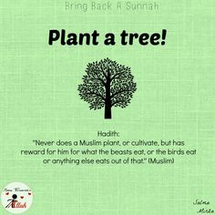 Helps your world, helps your health, helps you psychologically (making you feel good) but above all its a Sunnah which has great rewards in it. Islamic Qoutes, Islamic Teachings, Islamic Messages, Muslim Quotes, Islamic Inspirational Quotes, Prophet Muhammad Quotes, Hadith Quotes, Quran Quotes, Islam Hadith
