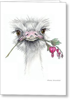 Matilda The Ostrich Greeting Card by Mamie Greenfield