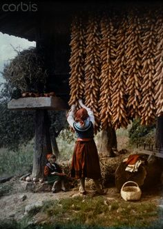 A view of a maize loft for drying the harvest called a morreo August, 1924.. Oviedo, Spain.  © Gervais Courtellemont/National Geographic Society/Corbis Licence Type:Rights Managed