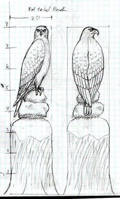 - Carving Red-tailed buzzard –Red Tailed Hawk - Carving Red-tailed buzzard – Relief Carving Techniques - Wood Carving Patterns and… Owl High Quality Hand-carved Top for Newel Stair Carved Wood Wood Carving Designs, Wood Carving Patterns, Wood Carving Art, Wood Art, Chain Saw Art, Chainsaw Wood Carving, Woodworking Images, Carved Wood Signs, Red Tailed Hawk