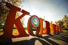 Csabai Kolbászfesztivál 2020 - Programturizmus  #magyarország #fesztivál #vásár #ünnep #kultúra #gasztronómia Hanoi, Sidewalk, Side Walkway, Walkway, Walkways, Pavement