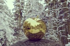 The Golden Apple by Javier Cortina 2016
