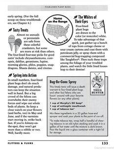 Jerry Baker S Bug Off 2 193 Super Secrets For Battling Bad Bugs Outfoxing