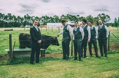 the groomsmen and Roxie the cow #rustic #country #wedding #party @treenridge