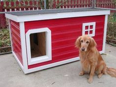 Tony - Ohio:  several years of being tried and tested, this dog house has been proven to be the most comfortable and the safest home you can build for your beloved dog.