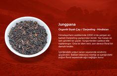 Jungpana  Organik Siyah Çay / Darjeeling – Hindistan  Himalaya'ların eteklerinde 2200 m'de yetişen en kaliteli Darleeling çaylarından biridir. Yazı hasatı ve tam gövdeli bir çaydır. Sürgünlerden sadece elle toplanmıştır. Orta bir dem verir, son derece floral bir damak bırakır.  İçeriğindeki yoğun tanen sayesinde sindirimi güçlendirir. Bakteri öldürücü niteliği ve içeriğindeki yoğun florid sayesinde ağız sağlığını korur.