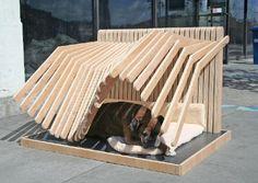 Hey... even Shaka my dog needs a cool spot!
