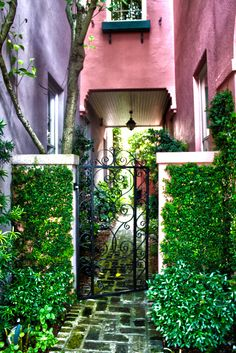 samanthasatsuma:    Alley gardenRainbow Row, I love the gate