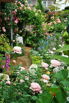 12 Stunning Cottage Garden Ideas for Front Yard Inspiration - Decoradeas May Garden, Dream Garden, Garden Path, Garden Beds, Beautiful Roses, Beautiful Gardens, Garden Design Software, Rose Garden Design, Famous Gardens