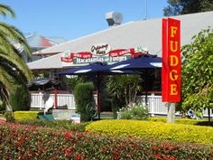 Tamborine Mountain Tour - Hop On Hop Off Tour from Gold CoastSmall Group Tours with Southern Cross Day Tours Gold Coast