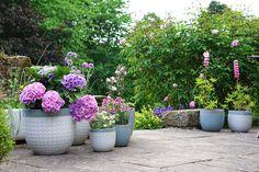 Laura Ashley Garden, Garden Pots, Garden Ideas, Ceramic Pots, Garden Accessories, Back Gardens, Outdoor Areas, Simple Way, The Ordinary