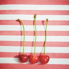 Cherries and stripes, essence of summer.