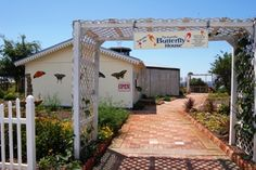 Visit the Panhandle Butterfly House in Navarre, Florida