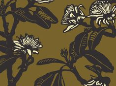 Shark Bay Rose (Shadow, Kernel & Birch) | Jude Taylor | Wildflower Art, Design & Fabric | Swan Valley, Perth, WESTERN AUSTRALIA