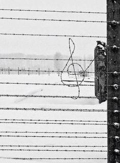 Street art photography by Francesco del Bravo. Barbed Wire, Friedrich Nietzsche, Black And White Pictures, Music Love, Live Music, Black And White Photography, Art Photography, In This Moment, Instagram