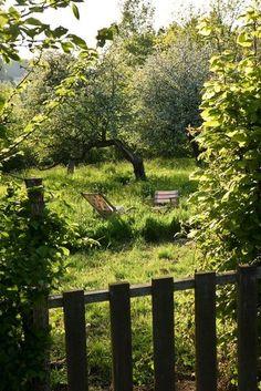 Le charme d'un jardin sauvage loin de tout | Photo: Gilles Trillard