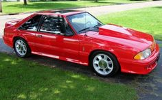 1993 cobra mustang - Google Search 1993 Ford Mustang, Fox Body Mustang, Mustang Cobra, Danielle Bregoli, American Muscle Cars, Car Show, Concept Cars, Cool Cars, Google Search