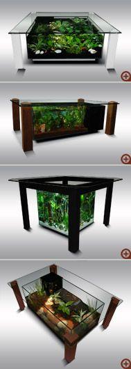 Table-aquarium