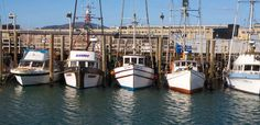Fisherman's Wharf - San Francisco's historical destination for restaurants, shopping and attractions
