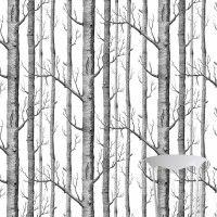 Tapeta ścienna Woods