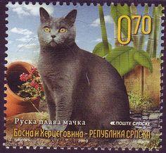 República Serbia de Bosnia y Herzegovina: Primeros Sellos Gato doméstico