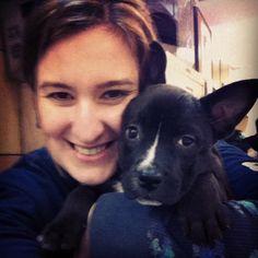 Puppy lovin' #mcspca #adopt #puppy by kbreiser