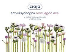 Wygraj zestaw kosmetyków Ziaja Jagody Acai - Wizaz.pl