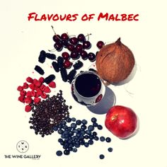 Flavours of Malbec