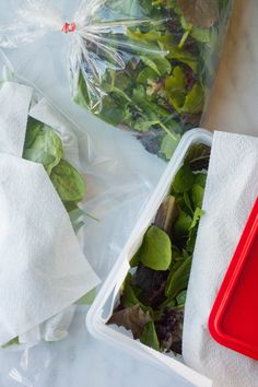 We Tried 3 Ways to Store Salad Greens, and Here's the Winner!  -  the best ways to store and keep veggies fresh, last longer.     lj