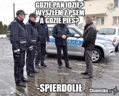 Dankest Memes, Jokes, Komodo Dragon, Haha, Humor, Funny, Shakira, Pictures, Poland