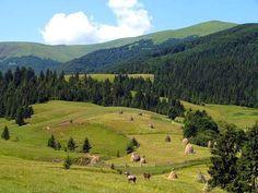 Polonyny, Carpathian Mountains
