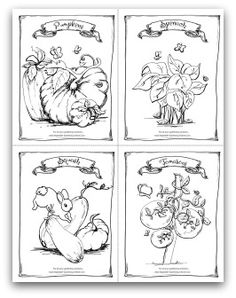 Free Printable Garden Pumpkin Spinach Squash And Tomato Coloring Activity Page For
